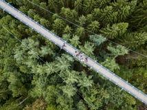 Ponte de suspensão de Geierlay, Moersdorf, Alemanha Imagens de Stock