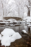 Ponte de Winterland Imagem de Stock Royalty Free