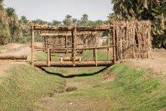 Ponte dei tronchi delle palme attraverso una fossa di irrigazione accanto al Nilo nel Sudan immagini stock libere da diritti