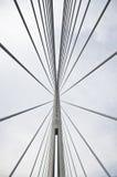 Ponte del Ada belgrado Immagine Stock Libera da Diritti