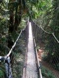 Ponte del baldacchino Immagini Stock