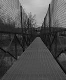 Ponte del cavallo Immagini Stock