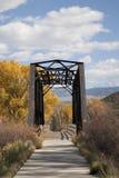 Ponte del ferro Immagine Stock Libera da Diritti