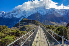 Ponte del fiume della puttana - parco nazionale di Aoraki - la Nuova Zelanda Fotografia Stock Libera da Diritti