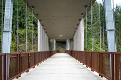 Ponte del fiume di Elwha Immagine Stock