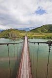 Ponte del fiume di Katun vicino al villaggio di Multa altai La Russia Fotografia Stock