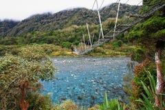 Ponte del fiume di Toaroha fotografie stock