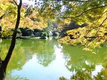 Ponte del giardino botanico con le riflessioni dell'albero Fotografie Stock