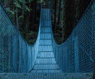 Ponte del metallo Immagine Stock