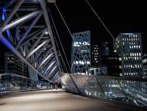 Ponte del metallo a Oslo Immagini Stock Libere da Diritti