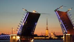 Ponte del palazzo e Peter e Paul Fortress divorziati notte stock footage