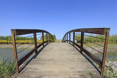 Ponte del parco Immagini Stock