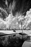 Ponte del parco nell'infrarosso Fotografia Stock Libera da Diritti