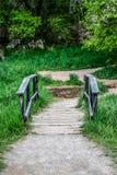 Ponte del piede Immagine Stock
