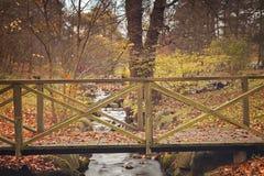 Ponte del piede del parco Immagini Stock Libere da Diritti