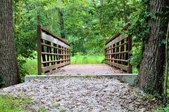 Ponte del sentiero per pedoni Fotografie Stock