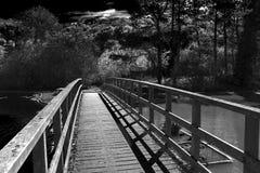 Ponte del terreno boscoso Immagine Stock