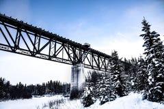 Ponte del treno immagine stock