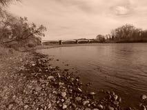 Ponte del viale di Cypress nella seppia fotografie stock libere da diritti