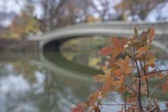Ponte dell'arco in autunno Fotografia Stock Libera da Diritti