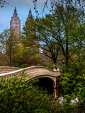 Ponte dell'arco - Central Park Immagini Stock Libere da Diritti