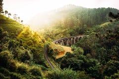 ponte dell'Nove-arco nello Sri Lanka Bello ponte ferroviario in Asia Natura dello Sri Lanka Piantagioni di tè in Asia coloniale immagine stock libera da diritti