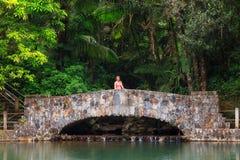 Ponte della giungla Fotografia Stock