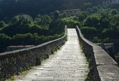 Ponte della Maddalena (Tuscany, Italy) Stock Image