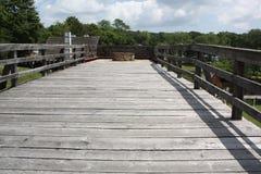 Ponte della passeggiata del cielo Fotografia Stock Libera da Diritti