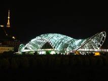 Ponte della tartaruga Immagine Stock