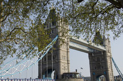 Ponte della torre di Londra in primavera Immagini Stock