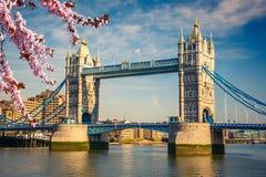 Ponte della torre a Londra alla molla Fotografia Stock Libera da Diritti