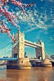 Ponte della torre a Londra alla molla Fotografia Stock