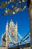 Ponte della torre in primavera fotografia stock