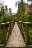 Ponte della valle di Ihlara fotografia stock