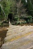 Ponte deteriorada Foto de Stock Royalty Free