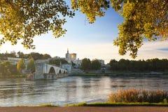 Ponte di Avignone con il Palace di papa ed il fiume Rodano, Provenza, Francia fotografie stock libere da diritti