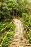 Ponte di bambù Fotografie Stock Libere da Diritti