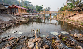 Ponte di bambù Fotografia Stock