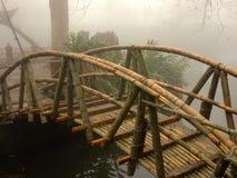 Ponte di bambù Immagine Stock