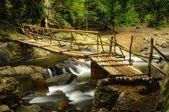 Ponte di bambù Immagini Stock