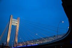 Ponte di Basarab, Bucarest immagini stock libere da diritti