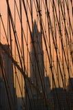 Ponte di Brooklyn, New York, S.U.A. Immagini Stock Libere da Diritti