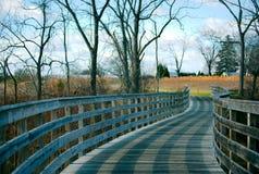 Ponte di camminata in foresta Fotografia Stock Libera da Diritti