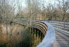 Ponte di camminata in foresta Fotografia Stock