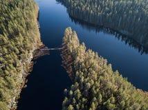 Ponte di camminata sopra il lago in parco nazionale finlandese fotografia stock libera da diritti