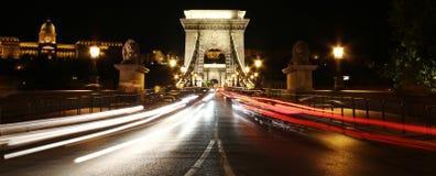 Ponte di catene alla notte. Budapest immagine stock libera da diritti