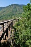 Ponte di Cesalpina nel Montenegro fotografia stock libera da diritti