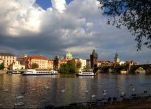 Ponte di Charles nei cigni di spirito di Praga nella parte anteriore Immagine Stock
