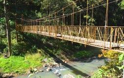Ponte di Coorg immagine stock libera da diritti